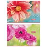 Альбом 24л А4 на скрепке Цветы. Tenderness