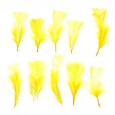 Набор перьев для декора 10 шт, размер 1 шт. 10*4 см, цвет желтый