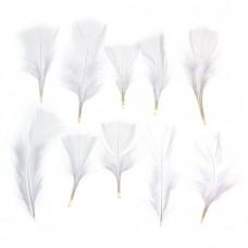 Набор перьев для декора 10 шт, размер 1 шт. 10*4 см, цвет белый