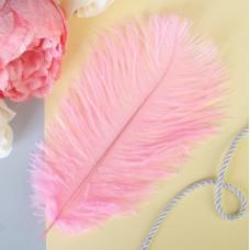 Перо для декора, размер 24 см, цвет розовый