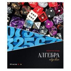Тетрадь предметная 48л Сияние мысли - Алгебра, металлизация, ТВИН-лак, конгрев