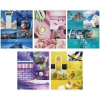 Тетрадь 48л линия Стиль. Colourful collage