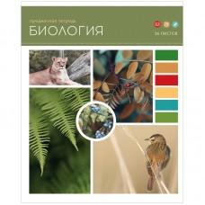 Тетрадь предметная 36л Твой коллаж - Биология, ВД-лак
