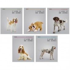 Тетрадь 40л линия Питомцы. Dogs. I like it!