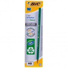Карандаш ч/г Bic Evolution HB, заточен., пластиковый